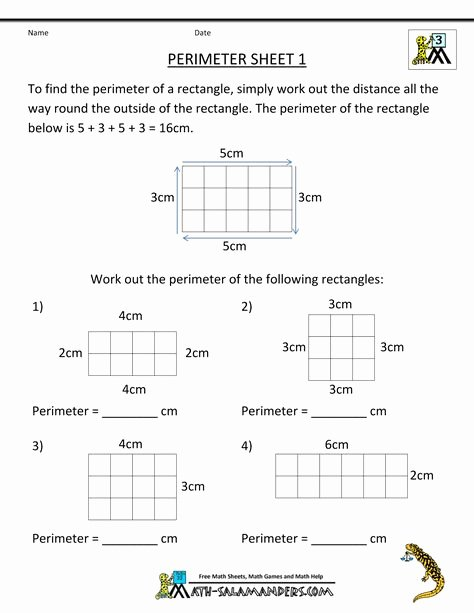 Salamander Math Worksheet Pinterest Espa±a