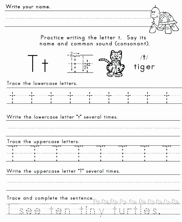 Schwa sound Worksheets Grade 2 T sound Worksheets Ending sounds T N P Worksheet Printable