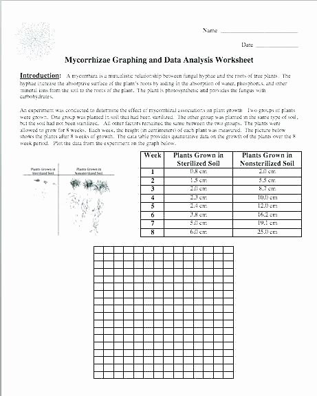 Science Prefixes and Suffixes Worksheets Scientific Investigation Worksheets 8th Grade