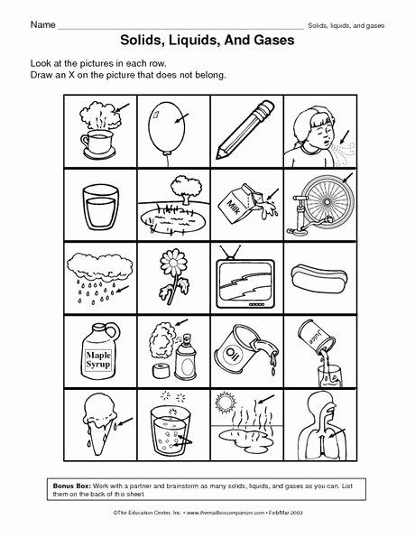 Science Worksheet 1st Grade 1st Grade Science Worksheets Awesome First Grade Science