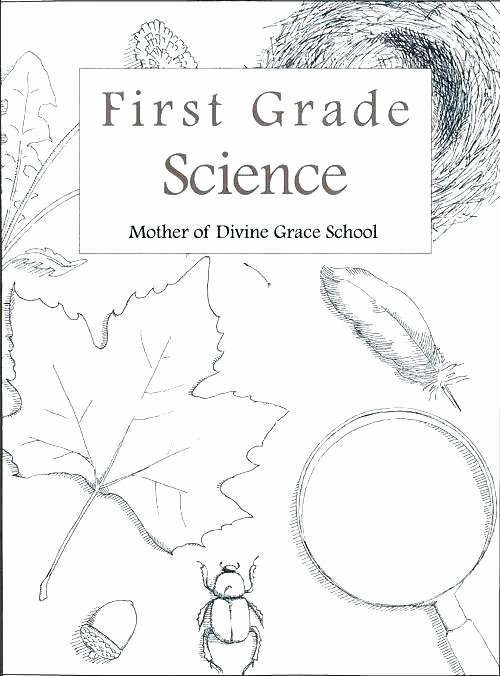 Science Worksheet 1st Grade Free First Grade Science Worksheets