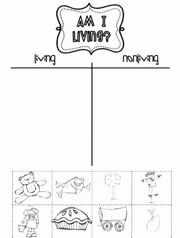 Science Worksheet 1st Grade Magnets Worksheets for 1st Grade Science Activities for