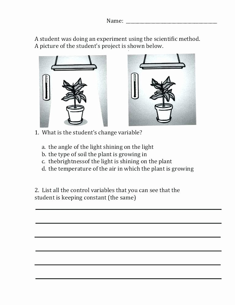 Scientific Method Worksheets 5th Grade Science Variables Worksheet 5th Grade