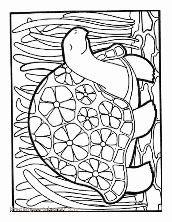 Sea Animal Worksheets 17 Inspirational Ocean Animals Coloring Pages