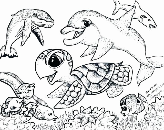 baby sea animals coloring pages lovely coloring pages ocean animals coloring pages for children of baby sea animals coloring pages