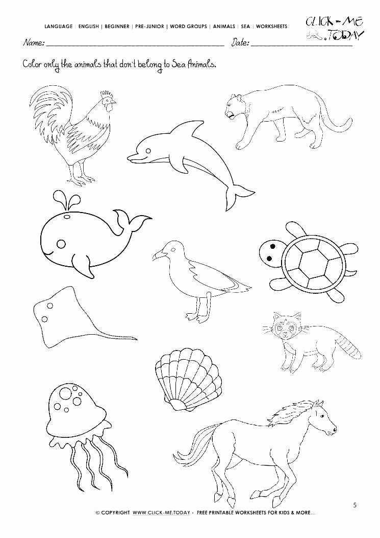 Sea Animal Worksheets How to Draw Animals Worksheets