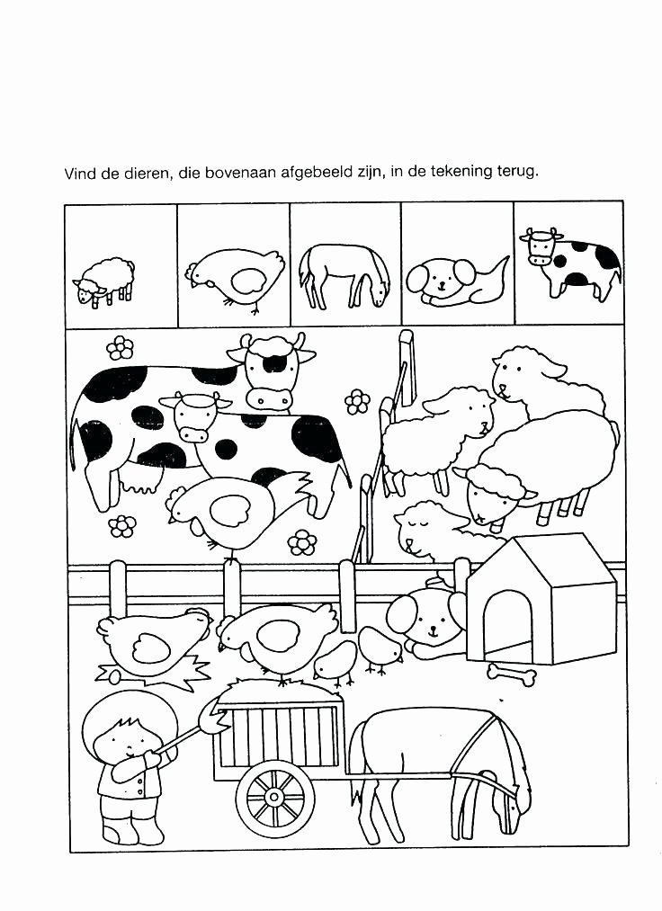 Sea Animal Worksheets Summer Worksheets for Kindergarten