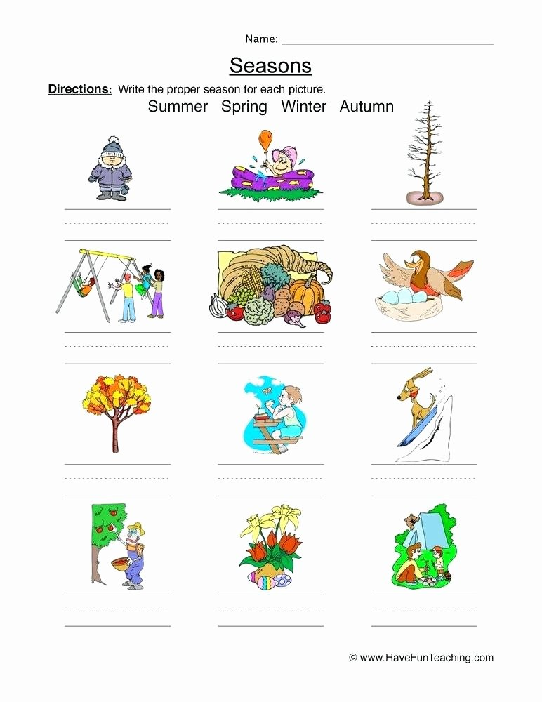 resources science classification worksheets classify and categorize 1st grade classifying seasons worksheet pictures 5th pdf