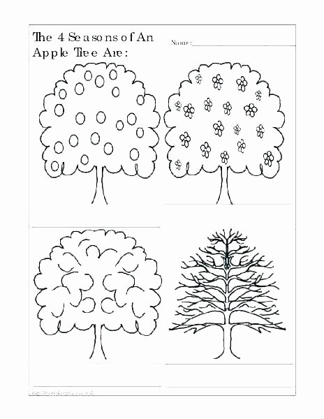 Seasons Worksheets for First Grade Seasons Worksheets Seasons Worksheet for China Free