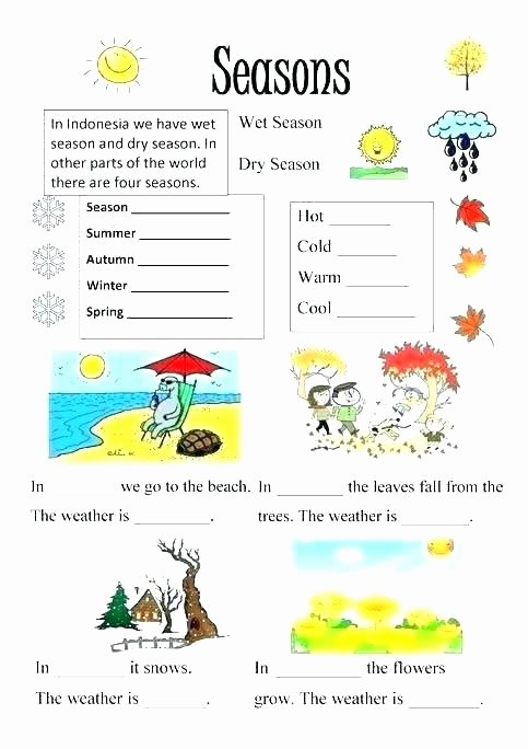Seasons Worksheets Kindergarten Address Worksheets for Kindergarten