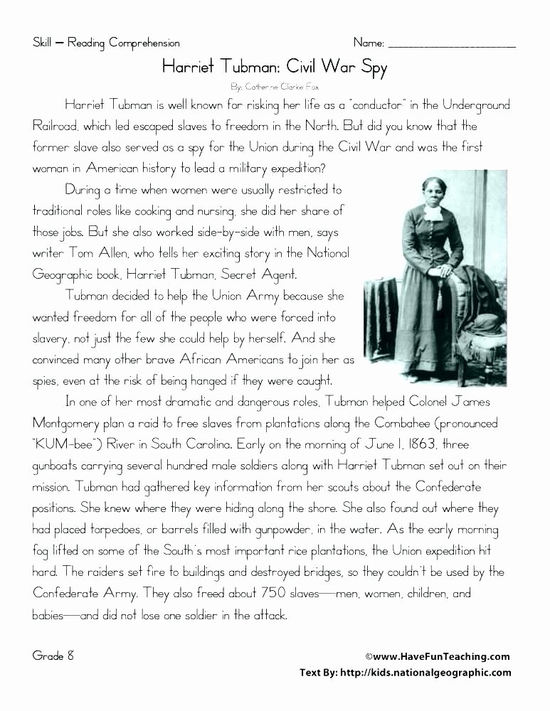 Second Grade History Worksheets Second Grade History Worksheets – Jimsgaragedoorsfo