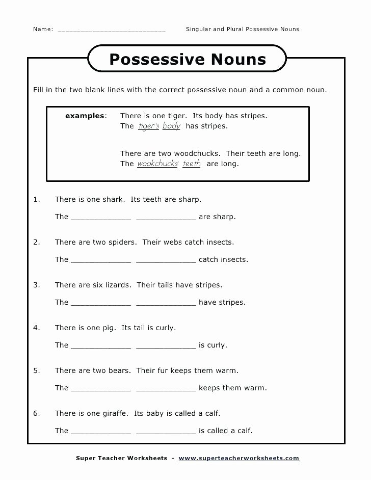 Second Grade Pronouns Worksheet Possessive Worksheets Grade Singular and Plural Nouns I