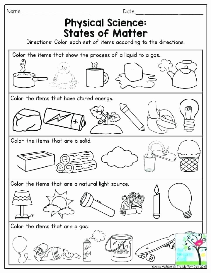 Second Grade Science Worksheets Free Free Science Worksheets for Grade 2