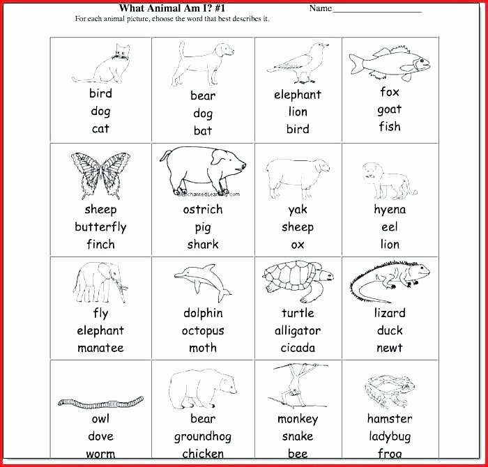 Second Grade Science Worksheets Free Magnets Worksheets for 1st Grade Science Activities for