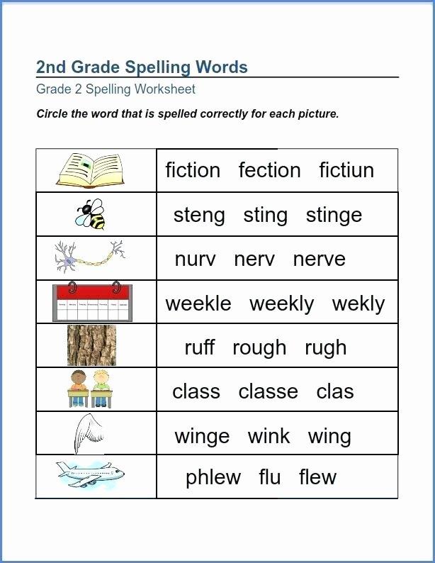 Second Grade Spelling Worksheets Second Grade Spelling Words Worksheets