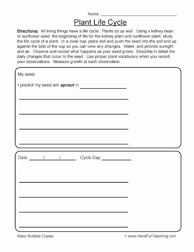 Self Esteem Worksheets for Youth Building Self Esteem In Children Worksheets This Small Group