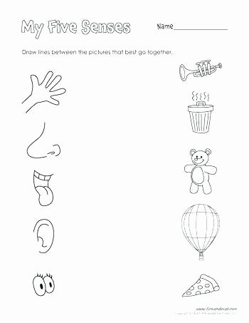 Sense Of Sight Worksheets Five Senses Worksheets Hard and soft Objects Printable Free