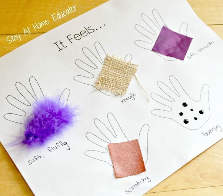 Sense Of Taste Worksheets Dina Al Afify Dalafify On Pinterest