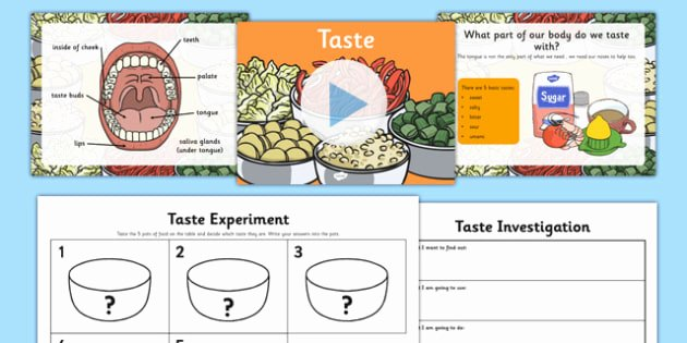 Sense Of Taste Worksheets Science Senses 5 Tastes Powerpoint and Worksheets Teaching