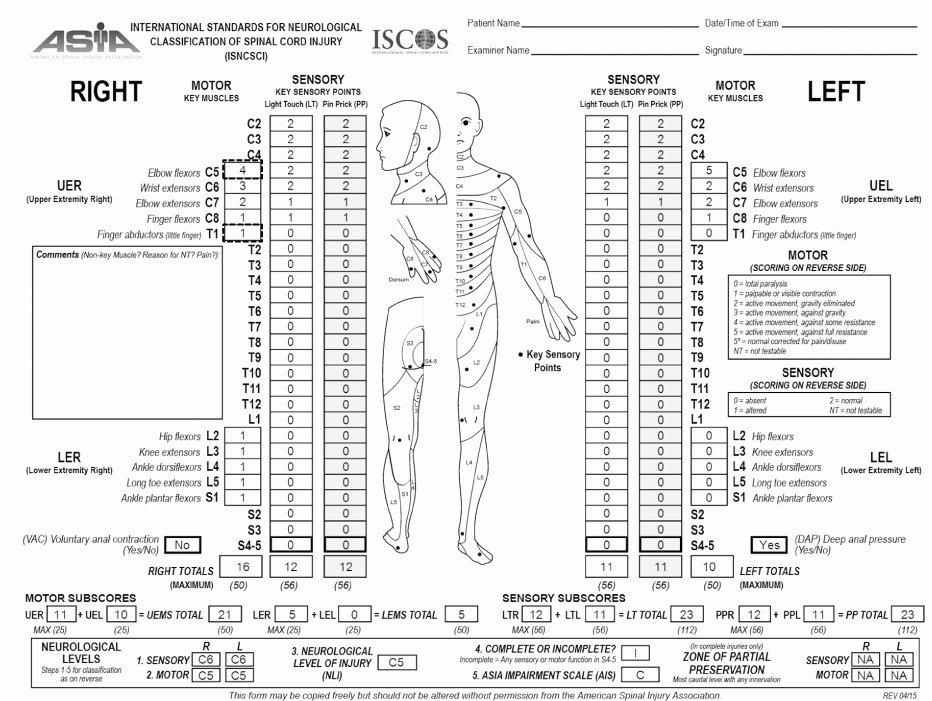 Sensory Detail Worksheet Initial assessment and Management Of Patients with Spinal