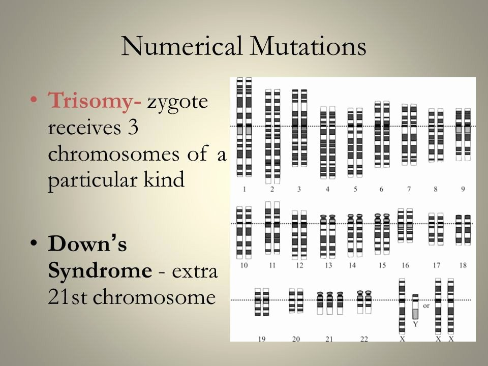 Sequencing Pictures Worksheet Worksheet Mutations Practice Answers Awesome Worksheet 49