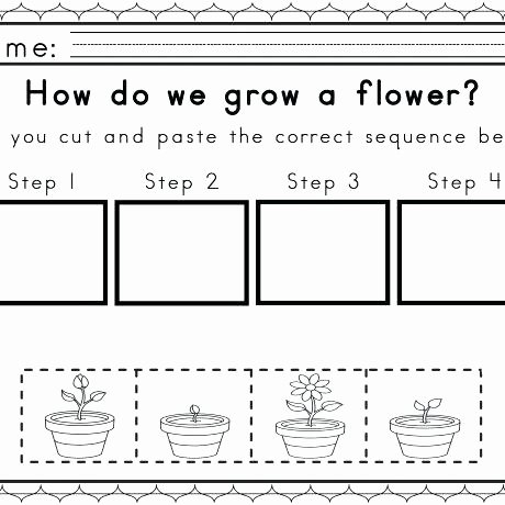 Sequencing Worksheets for Kindergarten Sequencing Worksheets Kindergarten – 7th Grade Math Worksheets