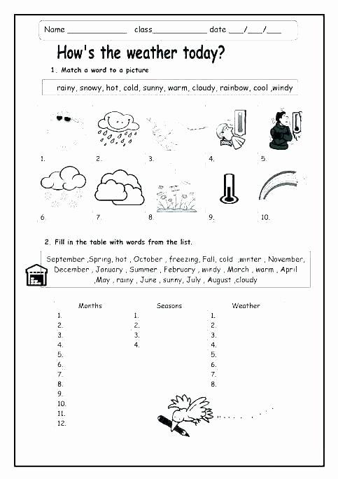 Severe Weather Worksheets Elegant Printable Weather Chart