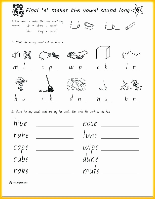 Silent E Worksheet Zoo Phonics Worksheets