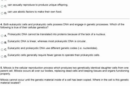 Skills Worksheet Dna Structure 20 Fresh Cell Concept Map Worksheet Answers
