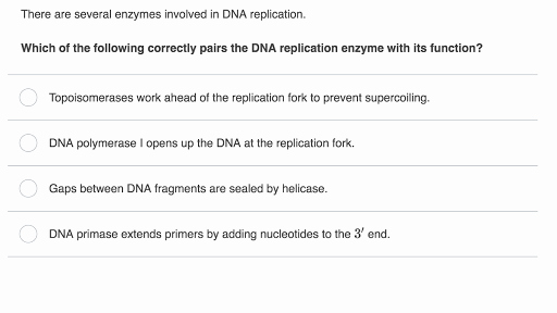 Skills Worksheet Dna Structure Dna as the Genetic Material Biology Science
