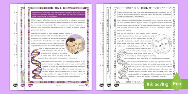 Skills Worksheet Dna Structure Fifth Grade Dna Reading Prehension Activity