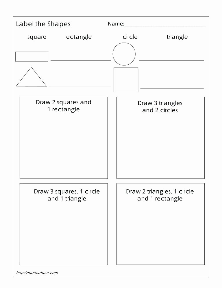 Sorting Shapes Worksheets Geometry Worksheets Shapes Worksheets Grade 5 Geometry 1