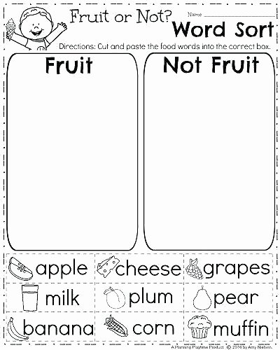 Sorting Worksheets for First Grade Kindergarten and First Grade Worksheets – Nwpropinspect