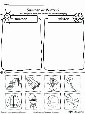 Sorting Worksheets for Kindergarten Free Understand Living Things Plants sort the