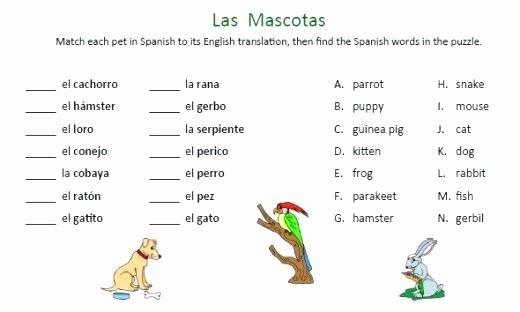 Spanish Reflexive Verbs Worksheet Printable Animals Worksheets Printable Likes and Dislikes In Spanish