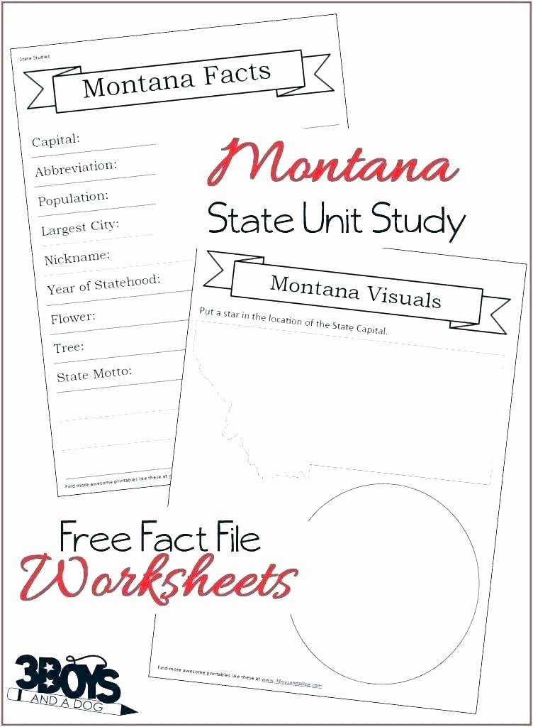 Summary Worksheets 5th Grade Nonfiction Worksheets 2nd Grade Reading Prehension