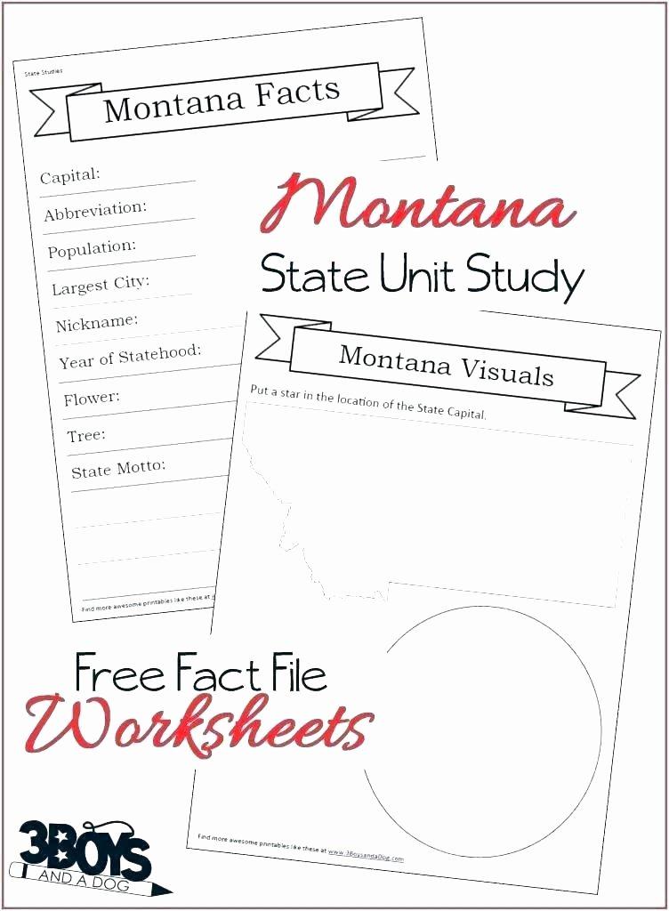 Summary Worksheets 5th Grade Nonfiction Worksheets 2nd Grade Reading Prehension