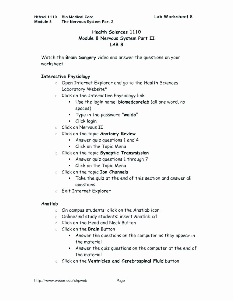 Teamwork Worksheets for Students Lovely High School Puter Science Lesson Plans