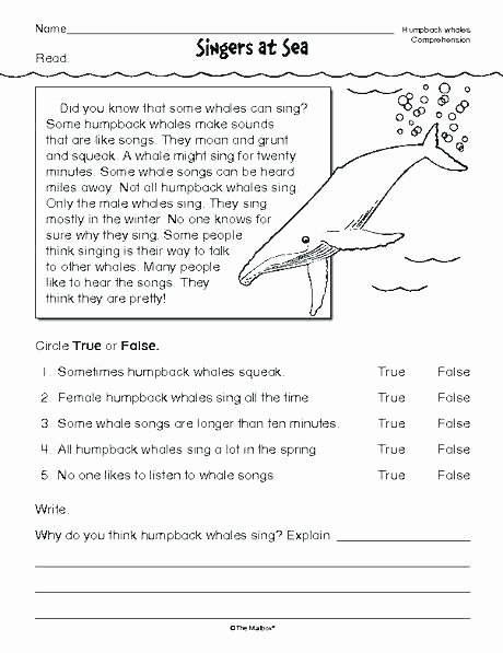 Text Structure 3rd Grade Worksheets Fiction Text Structure Worksheets