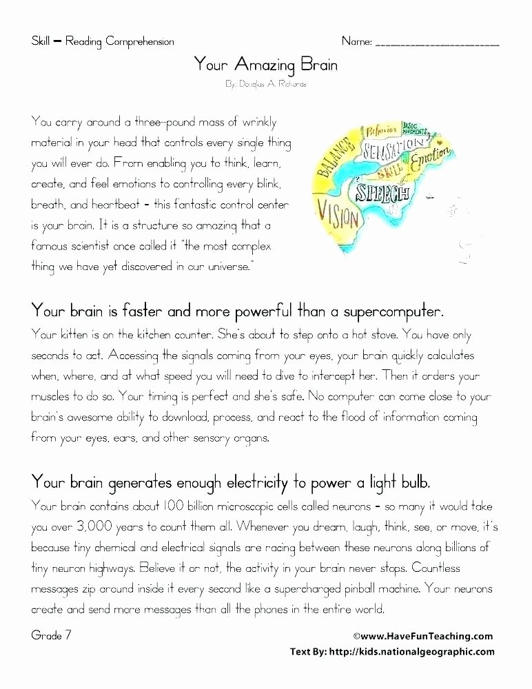 Text Structure 5th Grade Worksheets Procedural Text Worksheets
