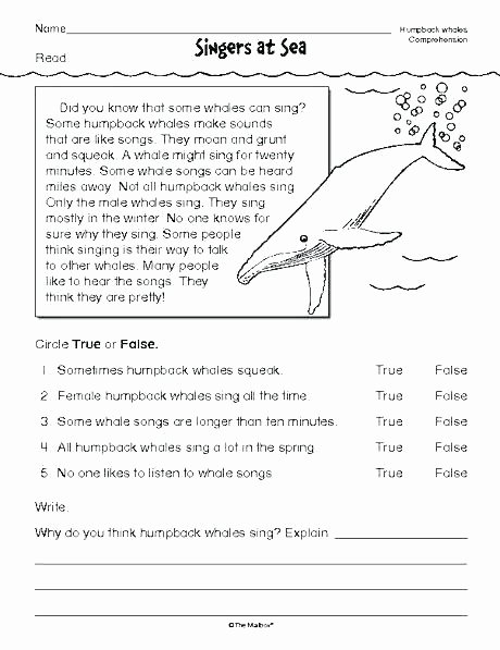 Text Structure Worksheets 4th Grade Informational Text Worksheets