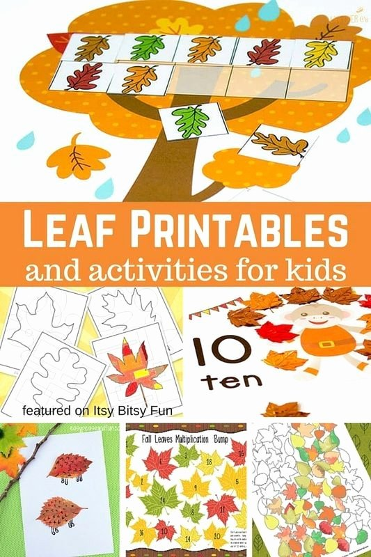 Thanksgiving Pattern Worksheets Lovely Leaf Printables and Activities