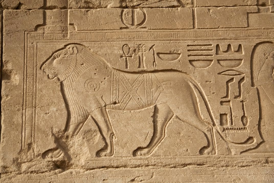 The Egypt Game Test Egypt S Mammal Extinctions Tracked Through 6 000 Years Of