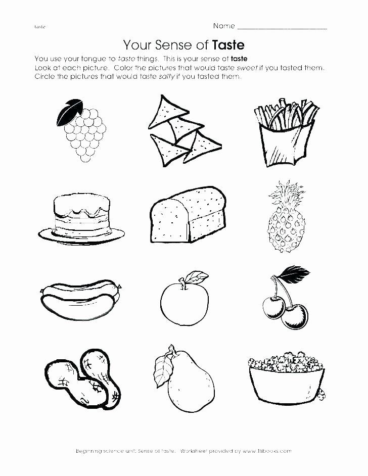The Five Senses Worksheets Five Senses Printable Worksheets
