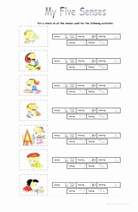 The Five Senses Worksheets Five Senses Worksheet the 5 Senses Senses Worksheet