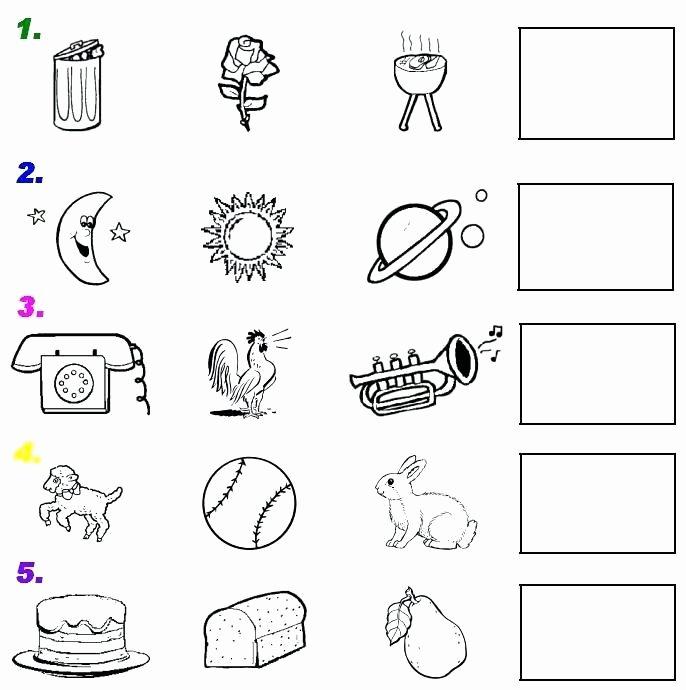 The Five Senses Worksheets Kindergarten Science Worksheets Five Senses for All Sense
