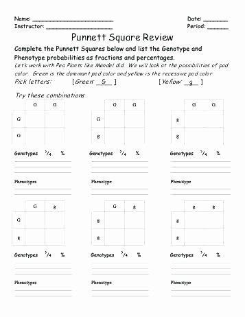 The Yellow Wallpaper Worksheet Answers Punnett Square Worksheets – Petpage