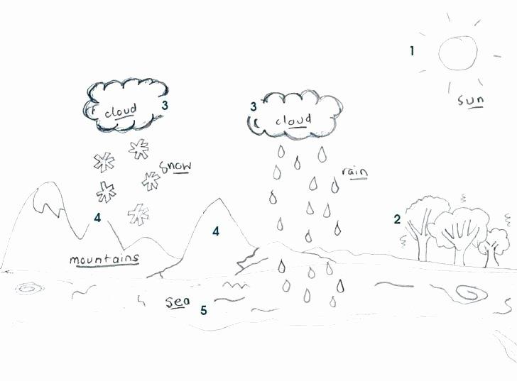 Timeline Worksheets for 1st Grade Free Printable Water Cycle Worksheets Free Printable Water