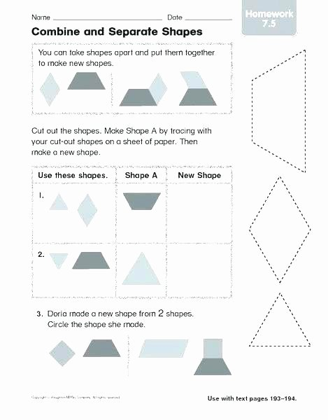 Two Dimensional Shapes Worksheets Shape and Space Worksheets