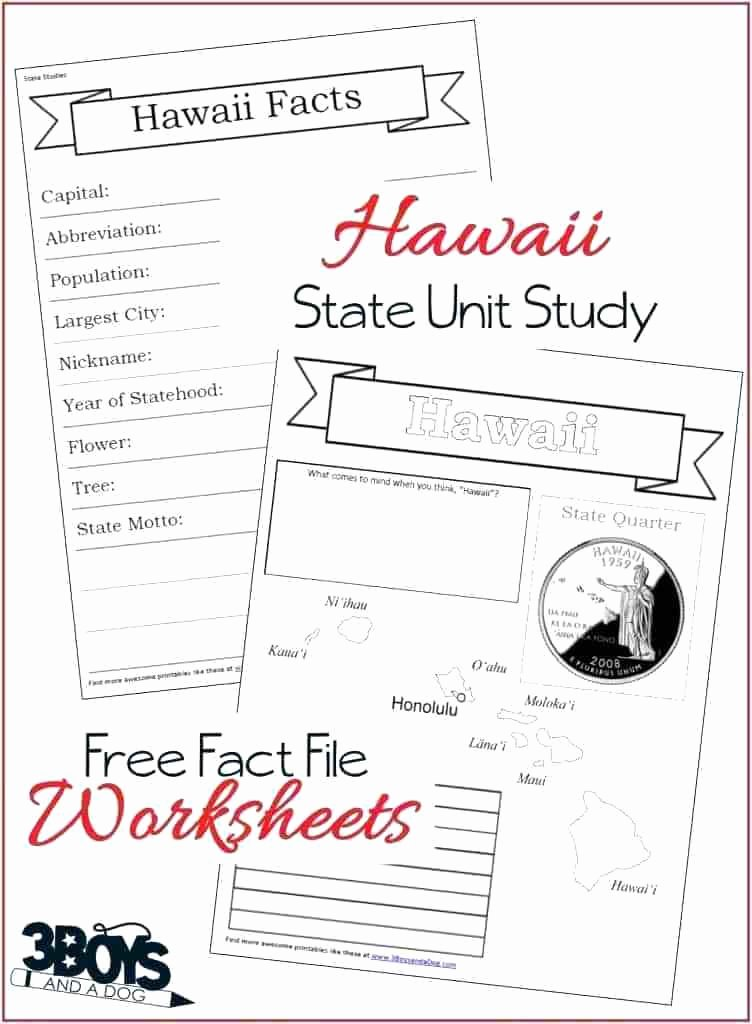 state fact file worksheets state fact file worksheets 3 boys and a dog hawaii geography worksheets